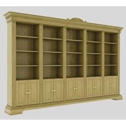 Бібліотека Кароліна 5
