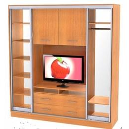 Шкаф-купе под телевизор Премиум 2.1