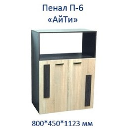 Пенал АйТи П-6