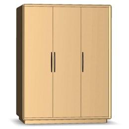 Шкаф-купе 3-х дверный Модена 3Д